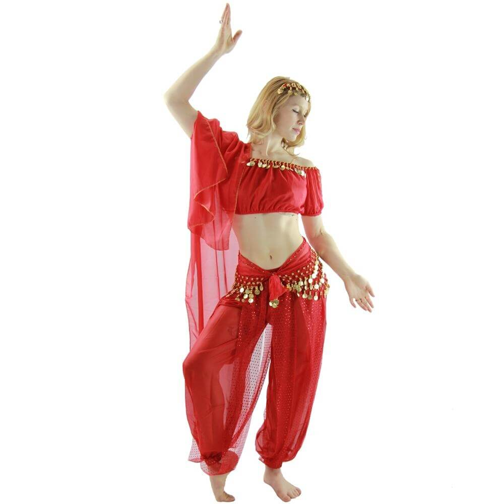Bloomer 5-Piece Belly Dance Costume - Click Image to Close