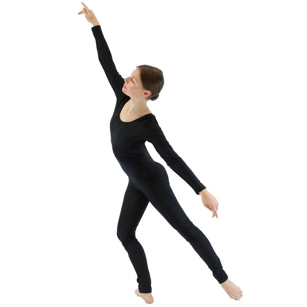Danzcue Nylon Full Body Adult Unitard - Click Image to Close