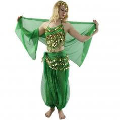Little Pepper 5-Piece Belly Dance Costume [BELST015]