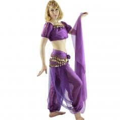 Bloomer 5-Piece Belly Dance Costume [BELST018]