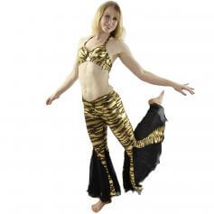 Black golden fish tail 2-Piece Belly Dance Costume