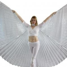Transparent Silver Worship Angel Wing