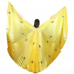 Peacock Worship Angel Wing