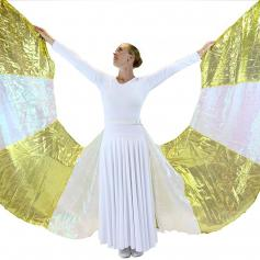 Danzcue Angel Stripe Wings