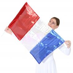 Metallic Flag with Rod